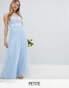 chi-chi-london-petite-chi-chi-london-petite-bardot-neck-sleeveless-maxi-dress-with-premium-lace-and-tulle-skirt-Xwatfrwei2V4BbufUkUh7-300