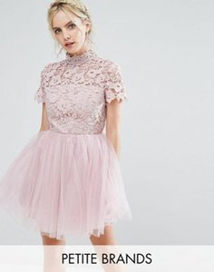 chi-chi-london-petite-chi-chi-london-petite-lace-top-full-prom-mini-dress-with-tulle-skirt-ohPa5A7fk25T6Ehhbx5Lb-300
