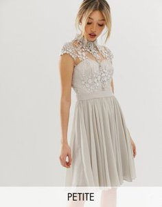 chi-chi-london-petite-chi-chi-london-petite-mini-prom-dress-with-lace-collar-in-grey-tpUGgNZtJ2y1Z7Pc6Hd1e-300