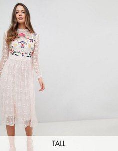 frock-and-frill-tall-frock-and-frill-tall-premium-embroidered-lace-prom-skater-dress-7xYFBGpnL2rZ1y1mAdCqB-300