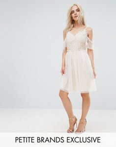little-mistress-petite-little-mistress-petite-cold-shoulder-lace-top-mini-prom-skater-dress-6AQDakE182hyascHE4MCk-300