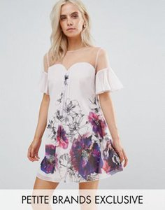 little-mistress-petite-little-mistress-petite-floral-printed-shift-dress-with-fluted-sleeves-DfQDakEzA2hy2scDG4MCv-300