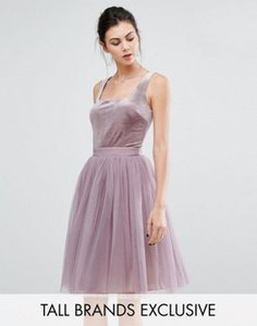 little-mistress-tall-little-mistress-tall-velvet-top-mini-skater-dress-with-tulle-skirt-dZMwBcWJ4RSSP33nzbF-300