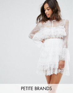 true-decadence-petite-true-decadence-petite-premium-lace-ruffle-mini-dress-with-sheer-sleeve-detail-3fQDakEWA2hyWscGJ4MCV-300