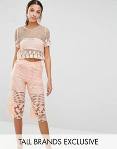 true-decadence-tall-true-decadence-tall-mesh-and-floral-lace-crop-top-GHFLL32J1RuSt3zn7MV-300